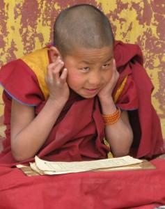 young tibetan monk